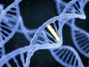 Medical Geneticist – How Does Genetic Testing Play a Role in my Health?